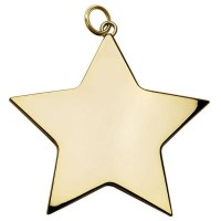 Boxed Star Medal