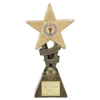 Medium Glitter Star Award