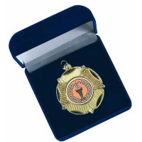 Medal Box Silk Lined
