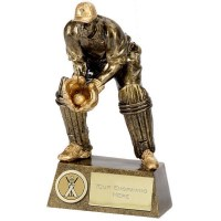 Wicket Keeper Award